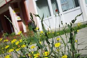 Erziehungs- und Familienberatungsstelle in Rüdersdorf wieder erreichbar